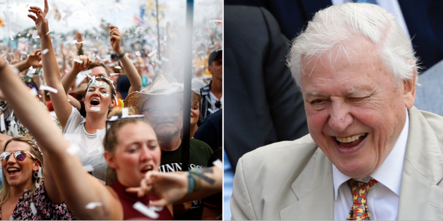 Montage. David Attenborough hyllar festivaldeltagarna på Glastonbury.  TT