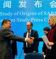 Tidigare i år försökte WHO och Kina leta efter virusets ursprung.  Ng Han Guan / TT NYHETSBYRÅN