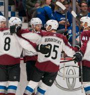 Coloradospelarna firar efter ett mål.  BOB FRID / BILDBYRÅN