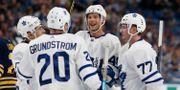 Toronto Maple Leafs.  Timothy T. Ludwig / TT NYHETSBYRÅN