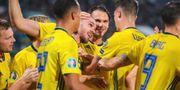 Sverige firar Marcus Danielsons 1–0-mål. ANDREAS L ERIKSSON / BILDBYRÅN
