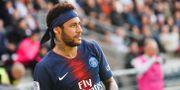 Neymar i PSG-tröjan. EDDY LEMAISTRE / BILDBYRÅN