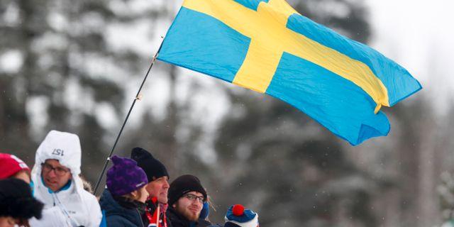 Människor med svenska flaggan/arkiv. Pedersen, Terje / TT NYHETSBYRÅN