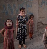 Flickor i Afghanistan. Felipe Dana / TT NYHETSBYRÅN