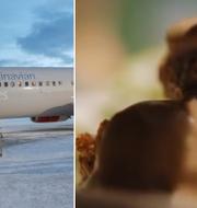 TT/ SAS reklamfilm