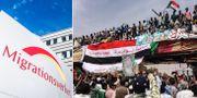 Migrationsverket/demonstrationer i Sudan. TT