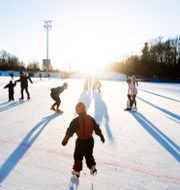 Barn åker skridskor. Nesvold, Jon Olav / TT NYHETSBYRÅN