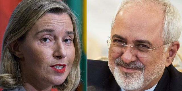 Iran bekraftar gripna britter