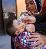 En pojke får poliovaccin i Peshawar, Pakistan/Illustrationsbild. FAYAZ AZIZ / TT NYHETSBYRÅN
