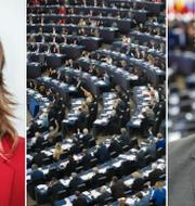 Malin Björk (V), EU-parlamentet i Strasbourg och Fredrick Federley (C). TT
