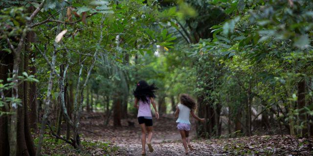 Arkivbild från Ceu do Mapia i Amazonas i Brasilien.  Eraldo Peres / TT NYHETSBYRÅN/ NTB Scanpix