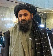Mulla Abdul Ghani Baradar Alexander Zemlianichenko / TT NYHETSBYRÅN