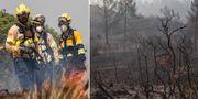 Skogsbränderna i Spanien. TT