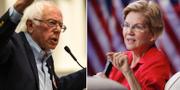 Bernie Sanders och Elizabeth Warren. TT