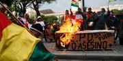 Människor gav sig ut på gatorna för att fira efter att Evo Morales meddelat sin avgång. Juan Karita / TT NYHETSBYRÅN