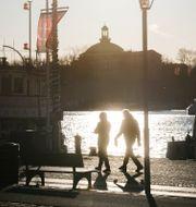 Personer promenerar i höstsolen på Strandvägen i Stockholm, 20 november.  Fredrik Sandberg/TT / TT NYHETSBYRÅN