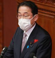 Japans premiärminister Fumio Kishida. Koji Sasahara / TT NYHETSBYRÅN