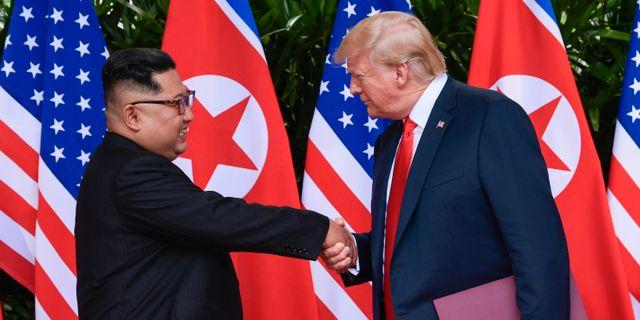 Arkivbild: Donald Trump och Kim Jong-Un när de båda möttes i juni Susan Walsh / TT / NTB Scanpix