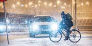 SMHI varnar för snöfall/Arkivbild Tomas Oneborg/SvD/TT / TT NYHETSBYRÅN