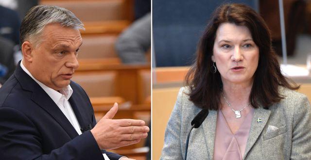 Ungerns premiärminister Viktor Orbán/Utrikesminister Ann Linde (S) TT