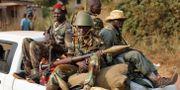 Soldater från den muslimska rebellgruppen Seleka  Jerome Delay / TT NYHETSBYRÅN/ NTB Scanpix