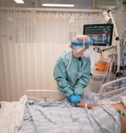 Patient vårdas på iva.  Björn Larsson Rosvall /TT / TT NYHETSBYRÅN