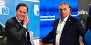 Mark Rutte/Victor Orbán. TT