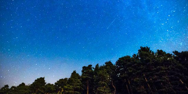 Arkivbild, stjärnfall. Andres Kudacki / TT / NTB Scanpix
