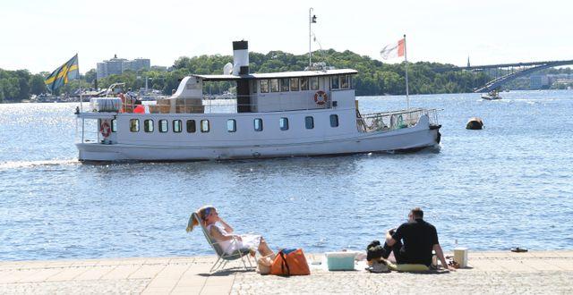 Bild från Riddarholmen i Stockholm. Fredrik Sandberg/TT / TT NYHETSBYRÅN