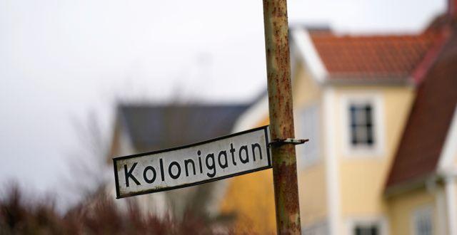 Platsen där mordet inträffade. Björn Larsson Rosvall/TT / TT NYHETSBYRÅN