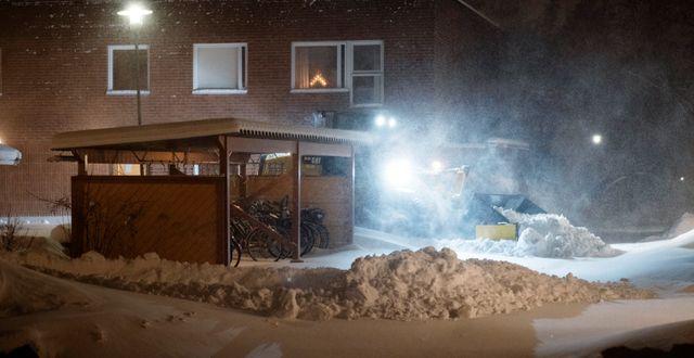 Snöplogning i Umeå. ERIK ABEL / TT / TT NYHETSBYRÅN