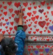 Kvinna målar röda hjärtan på minnesvägg till pandemins offer i London. Frank Augstein / TT NYHETSBYRÅN