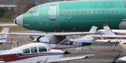 Boeing 737 Max 8. STEPHEN BRASHEAR / GETTY IMAGES NORTH AMERICA