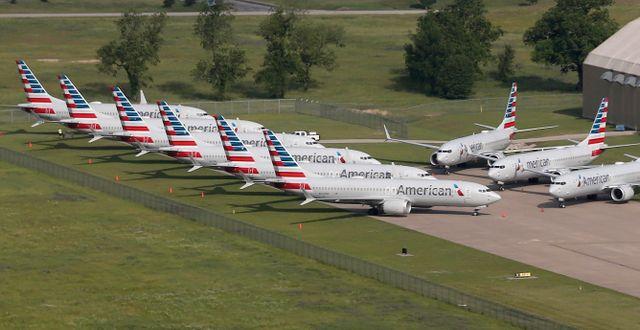 American Airlines 737 Max-plan – fortfarande på marken.  Tom Gilbert / TT NYHETSBYRÅN