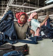 Fabriksarbetare i en textilfabrik utanför Addis Abeba som tillverkar kläder för H&M, arkivfoto. Yvonne Åsell/SvD/TT / TT NYHETSBYRÅN