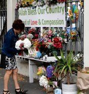 Kvinna lägger blommor vid en minnesplats ett år efter attacken den 15 mars. Mark Baker / TT NYHETSBYRÅN
