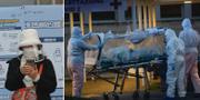 Kvinna i Seoul / Patient på bår i Rom TT