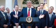 Donald Trump under måndagens presskonferens.  KEVIN LAMARQUE / TT NYHETSBYRÅN