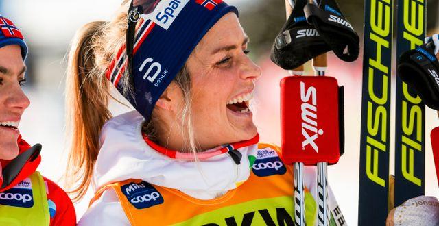 Therese Johaug jublar efter loppet. PATRICK STEINER / BILDBYRÅN