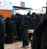 Kvinnan erbjöd sig att förmedla pengar till fångar i al Hol-lägret. Maya Alleruzzo / TT NYHETSBYRÅN