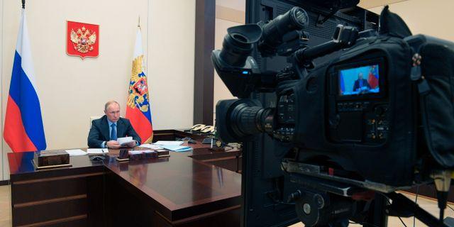 Vladimir Putin under en videokonferens i veckan. Alexei Druzhinin / TT NYHETSBYRÅN