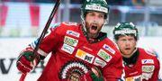 Joel Lundqvist jublar. MATHIAS BERGELD / BILDBYRÅN