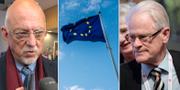 EU-minister Hans Dahlgren och den tidigare statsministern Ingvar Carlsson.  TT