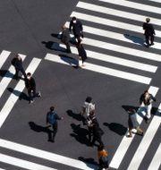 Arkivbild: Ett övergångsställe i Tokyo.  Eugene Hoshiko / TT NYHETSBYRÅN