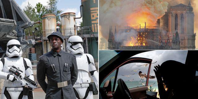 Star Wars Galaxy's Edge, Notre Dame, Bahamas. John Raoux/TT Nyhetsbyrån/Ramon Espinosa