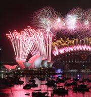 Arkivbild från nyårsfirandet i Sydney. Rob Griffith / TT NYHETSBYRÅN