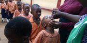 Skolflickor vaccineras i Lagos, Nigeria. GEORGE OSODI / TT / NTB Scanpix