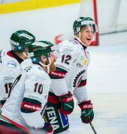 Frölundas Max Friberg jublar med lagkamrater efter ett av målen. CHRISTIAN ÖRNBERG / BILDBYRÅN