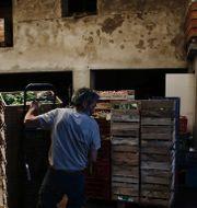 Arkivbild: Grönsakshandlare i Paris Thibault Camus / TT NYHETSBYRÅN