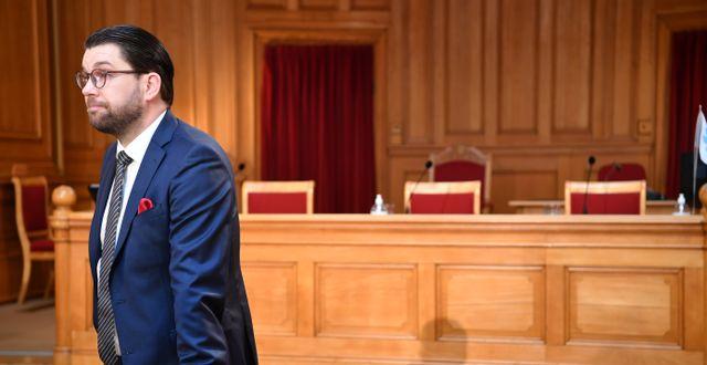 Sverigedemokraternas partiledare Jimmie Åkesson (SD). Henrik Montgomery/TT / TT NYHETSBYRÅN
